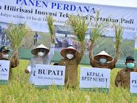 Tingkatkan Produksi Padi Secara Maksimal, Petani Dihimbau Gunakan Pupuk Non-subsidi