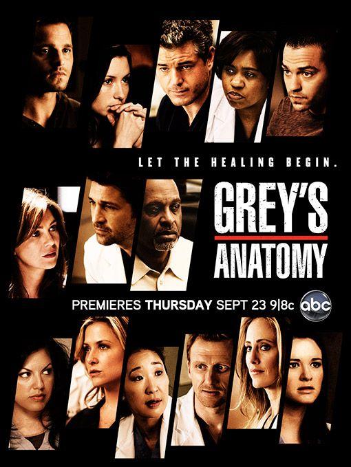 Greys Anatomy Temporada 7 1080p Dual Latino/Ingles