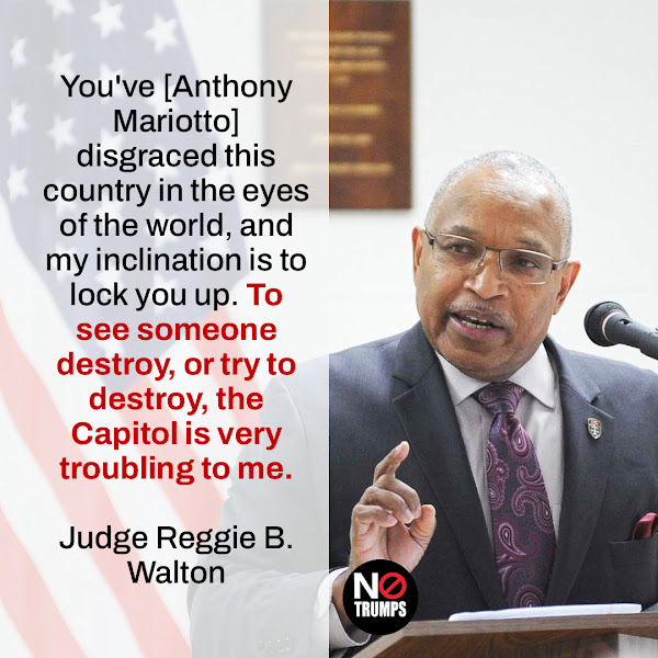 You've [Anthony Mariotto] disgraced this country in the eyes of the world, and my inclination is to lock you up. To see someone destroy, or try to destroy, the Capitol is very troubling to me. — Judge Reggie B. Walton