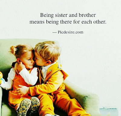 30+ Brother Sister Quotes to Share their Love