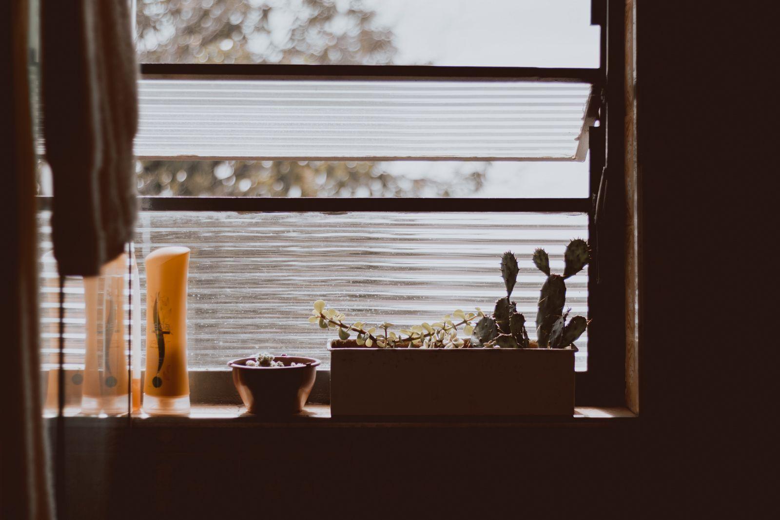 janela de banheiro com suculentas