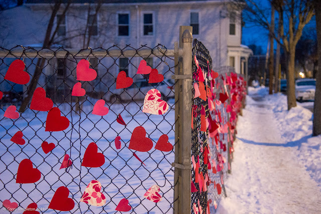 Portland, Maine Photo by Corey Templeton Valentines Day 2021