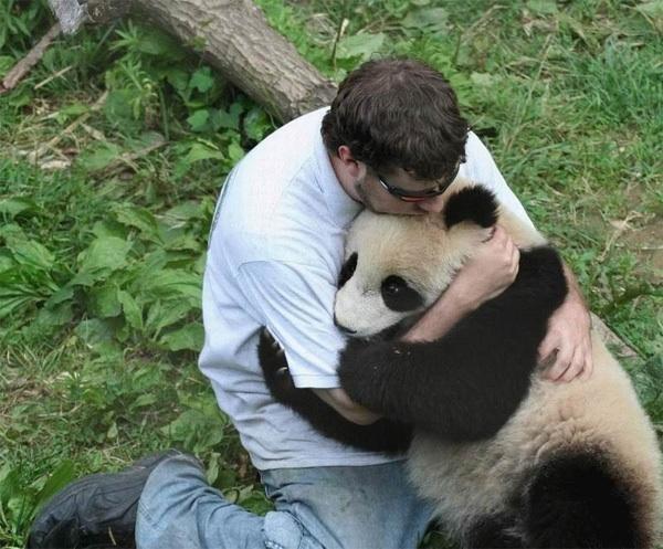 foto de abrazo entre un hombre y un oso panda