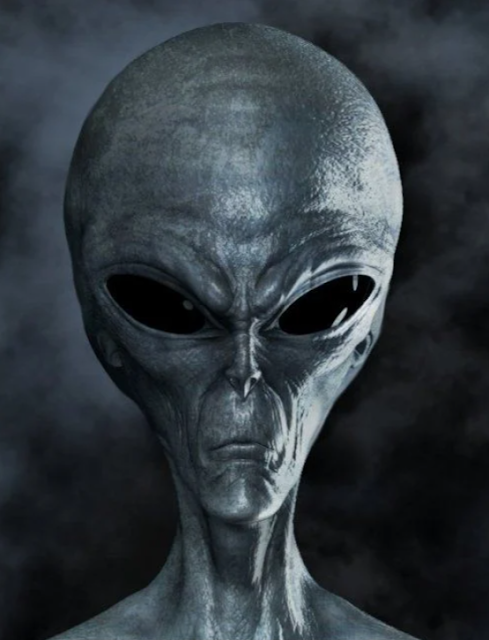Alien-head-on-grey-background