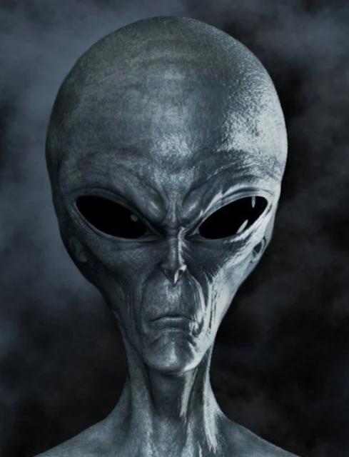 Alien-head-on-grey-background