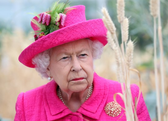 Queen Elizabeth orders all royals to find rapid 'solution' to Harry and Meghan crisis