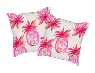 White Background of 2 Pineapple Pillows
