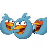 الطائر المنقسم لعبة الطيور الغاضبة