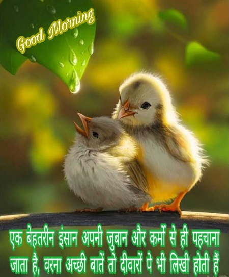 Best 25+ Good morning Quotes in Hindi with Images
