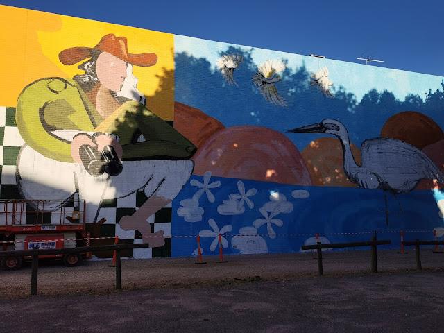 Albury Street Art   SIRHC