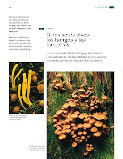 Apoyo Primaria Ciencias Naturales 4to Grado Bloque II Tema 2 Otros seres vivos: los hongos y las bacterias
