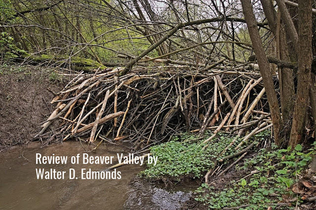 Beaver Dam: Review of Beaver Valley by Walter D. Edmonds