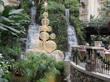 Chicken Fat Gaylord' Opryland Christmas Time
