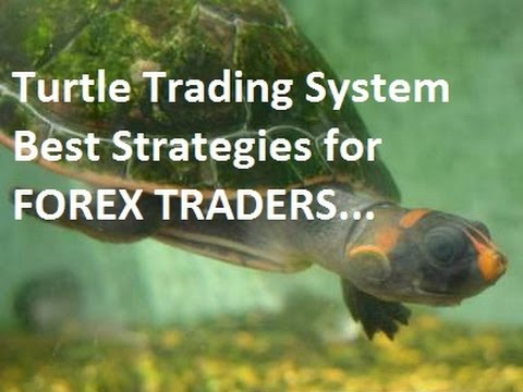 Gagal trading forex currency