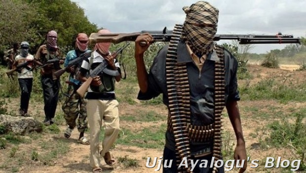 BREAKING: Most-wanted Boko Haram commander caught in politician's home