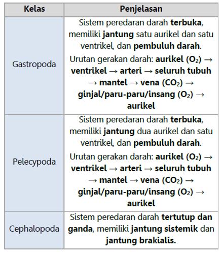 Sistem Peredaran Darah Mollusca