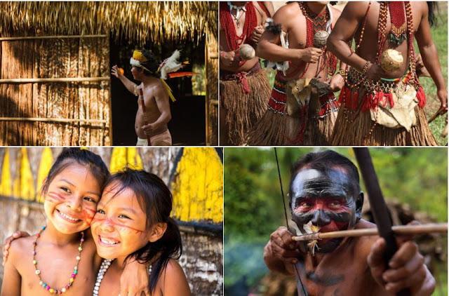 Tờ The Sun từng khẳng định còn rất nhiều bộ lạc đang sống ẩn dật bên trong khu rừng và không giao tiếp với thế giới bên ngoài. Cho tới nay, người ta mới tìm ra khoảng 350 ngôi làng của các bộ tộc sinh sống trong rừng. Họ vẫn duy trì các lối sống từ xưa như cúng tế, săn bắn...