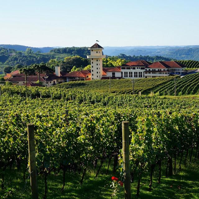 Spa do Vinho no Vale dos Vinhedos