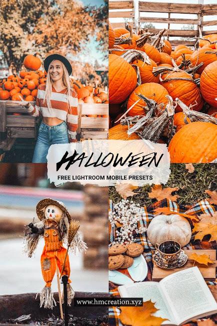 Top 5 Halloween lightroom mobile presets free download