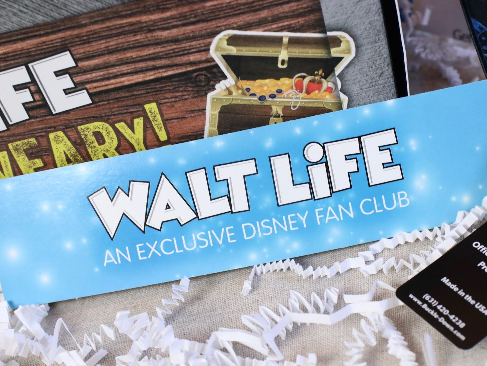 """Walt Life"" Monthly Subscription Box REVIEW!"