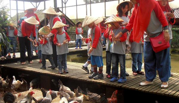 wisata keluarga kuntum farm field bogor