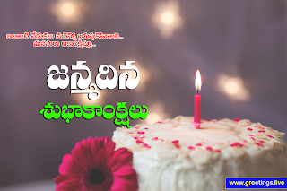 "Telugu birthday wishes ""Janmadina Subhakankshalu"" Telugu Greetings, candle, cake,flower"