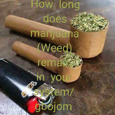 How long does marijuana (Weed) remain in your system
