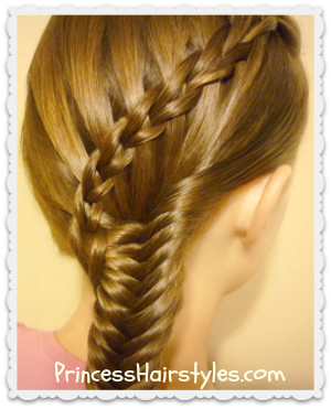 Scissor Waterfall Braid And Fishtail Braid Combo