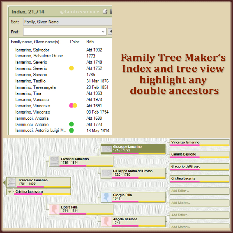Color dots in the index and color bars in the tree view tell me which branch, or branches, an ancestors belongs to.