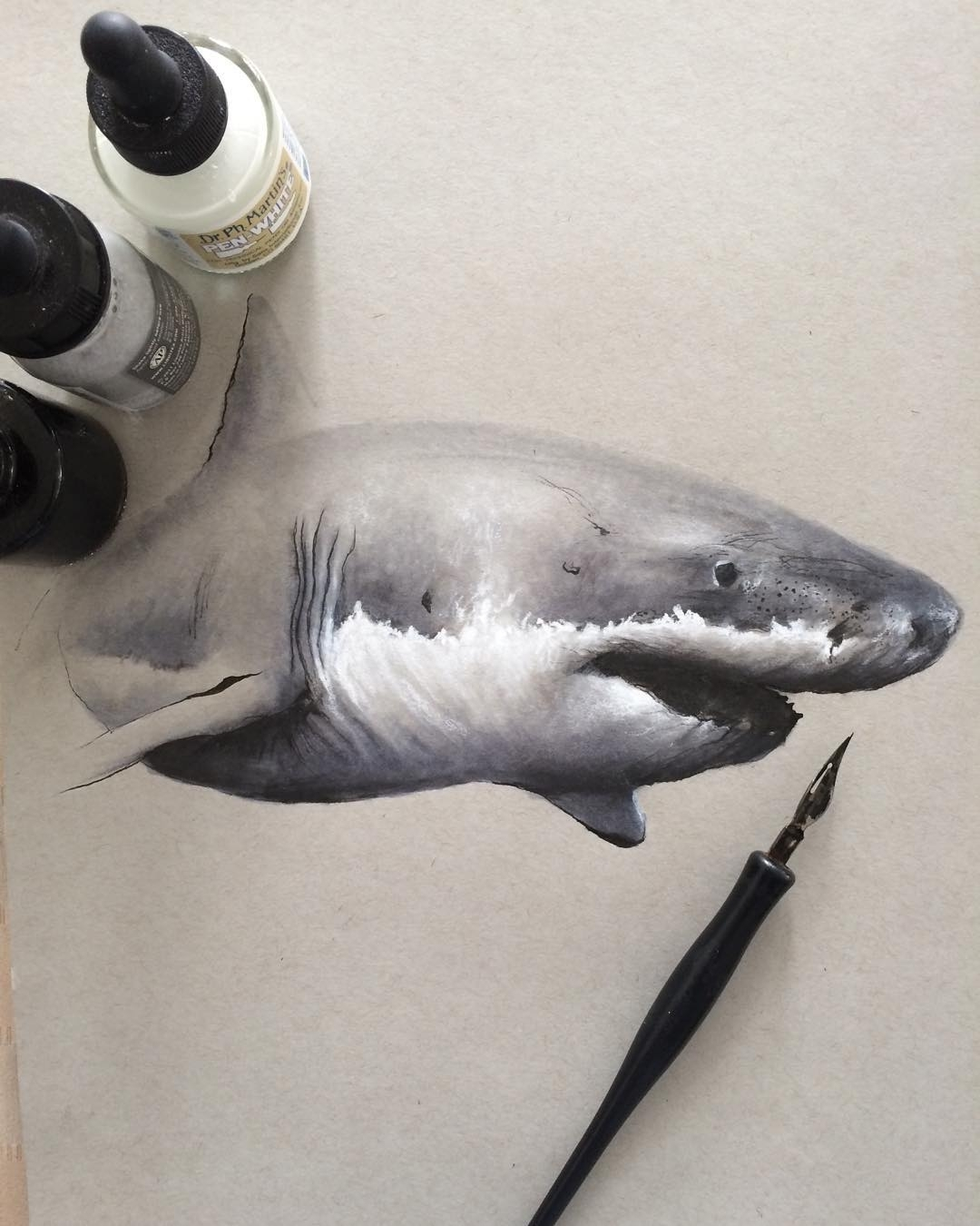 07-Great-White-Shark-Jonathan-Martinez-Art-of-the-Endangered-Paintings-and-Drawings-www-designstack-co