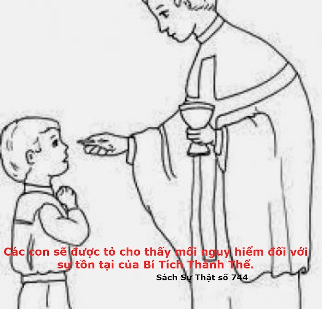 Các con vẫn phải rước Mình Thánh. Các con không được phép ngừng Thánh Lễ hằng ngày vì các con không bị buộc phải thực hiện quyết định này
