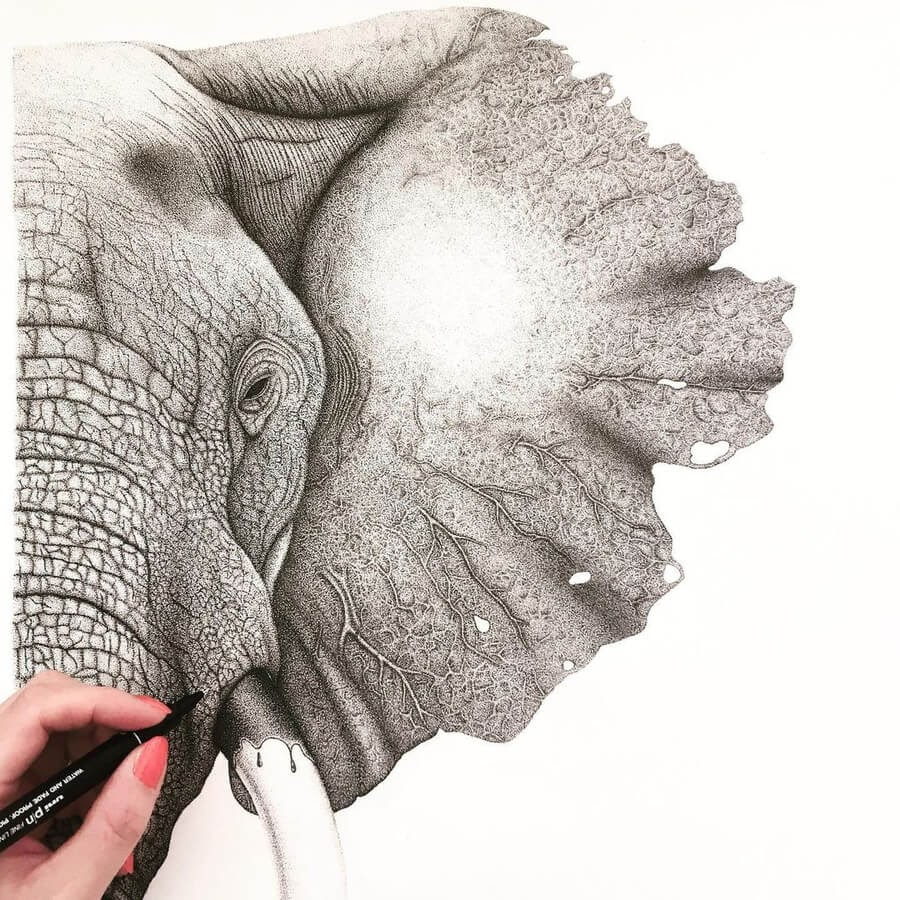 02-Elephant-Stine-Lee-www-designstack-co