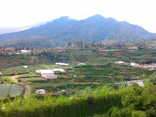 Tempat Reuni Murah Nuansa Alam Di Bandung
