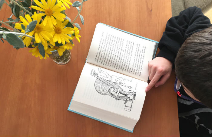 libros juveniles duomo algo extremadamente raro ha ocurrido Huggabie Falls adam cece
