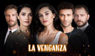Ver esta espectacular Telenovela Turca La Venganza capítulo 11 en español online gratis