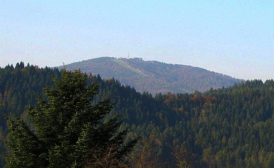 Jaworzyna Krynicka (1114 m n.p.m.).