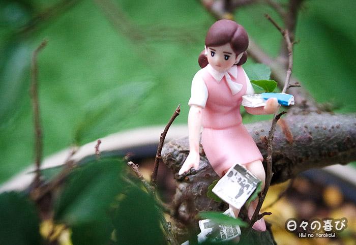 fuchiko assise branche bonsai