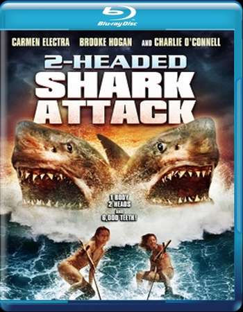 Poster Of 2-Headed Shark Attack 2012 Dual Audio 130MB BRRip HEVC Mobile Free Download Watch Online Worldfree4u