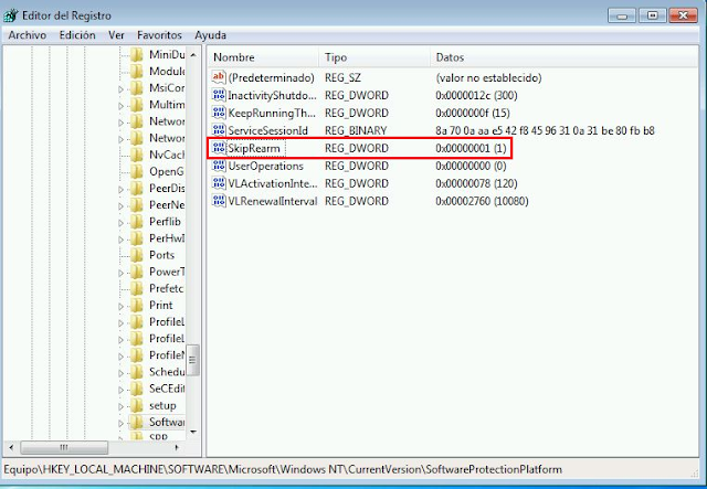 HKLM\SOFTWARE\Microsoft\Windows NT\CurrentVersion\SoftwareProtectionPlatform\SkipRearm