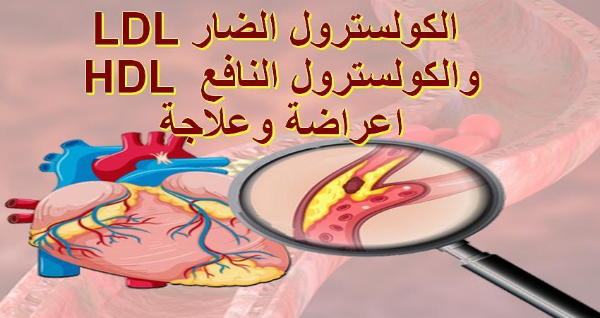 ماهو الكولسترول النافع HDL وماهو الكولسترول الضار  LDL