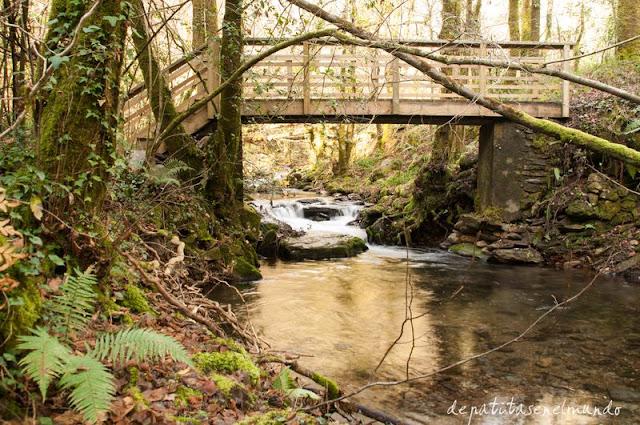 Puente de madera Fragas del Eume