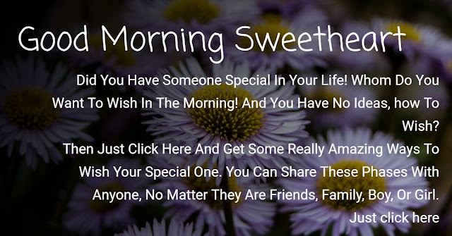 """Click here and get some really amazing """"Good Morning Sweetheart"""" messages that anyone can love."""