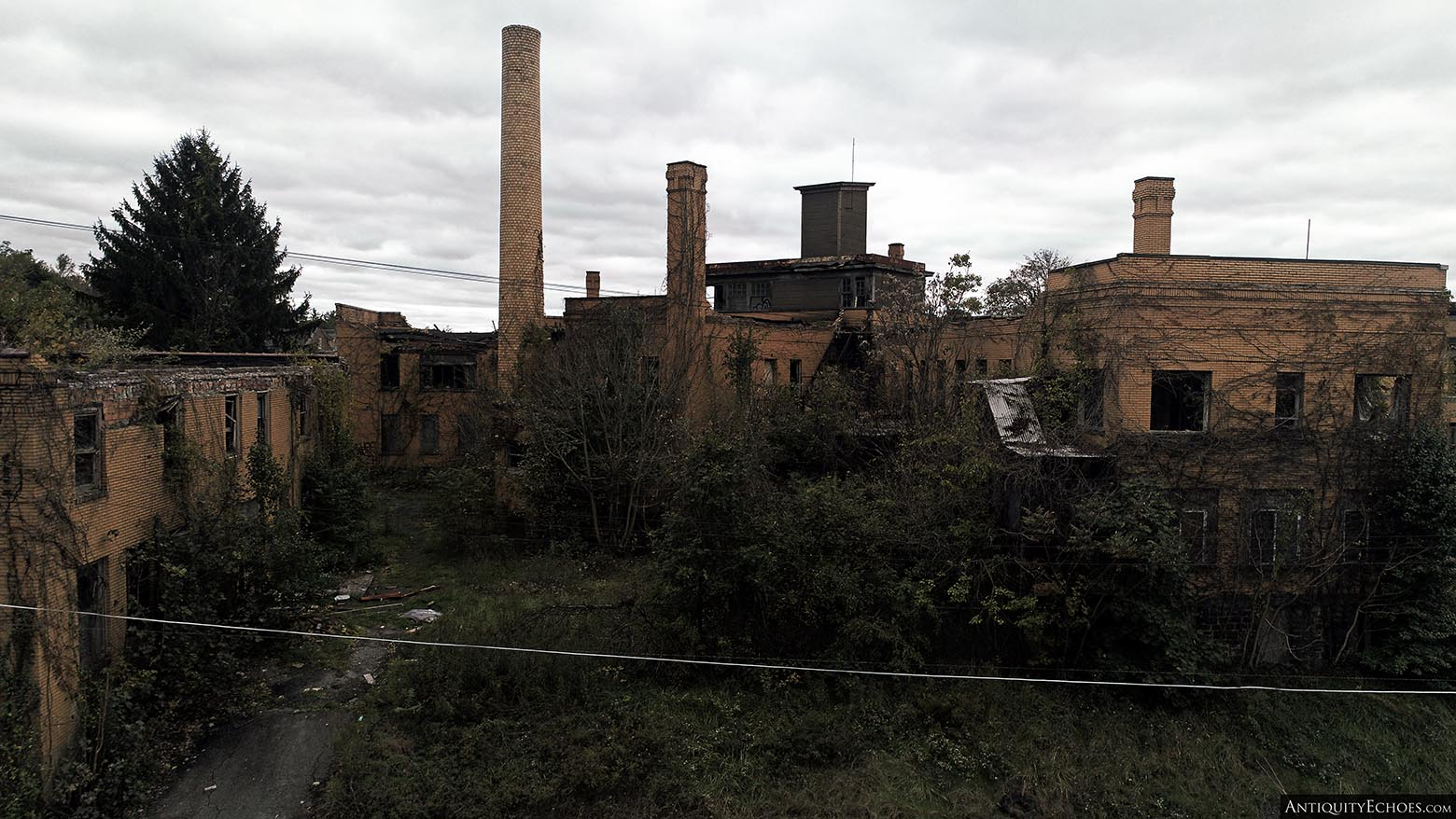 Brownsville General Hospital - Overgrown Property