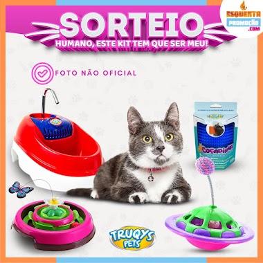 SORTEIO - Kit de Brinquedos Para Gatos