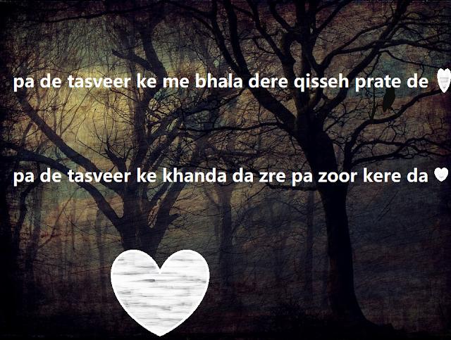 best pashto poetry pashto shairi- amazing pashto poetry