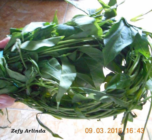 Langpipi and Tebu Telur