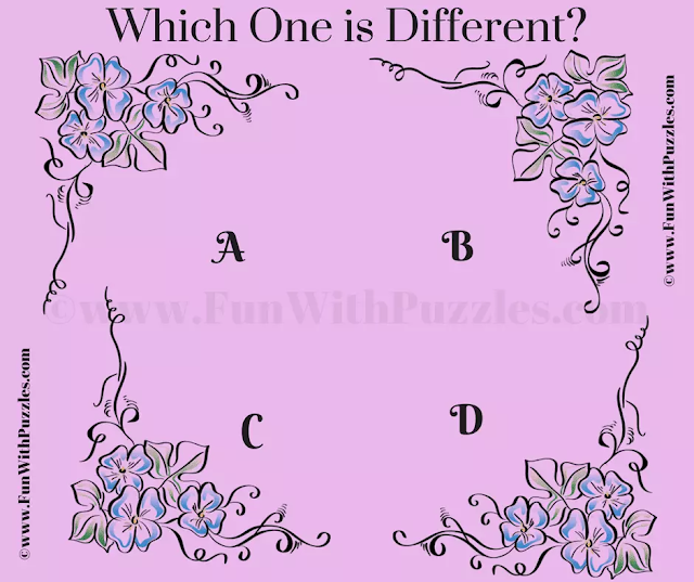 Can you Pick the Odd One Out in this Puzzle Question?