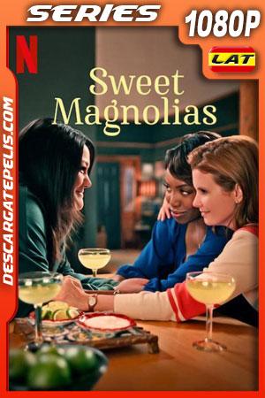 Dulces magnolias (2020) 1080p WEB-DL Latino – Ingles