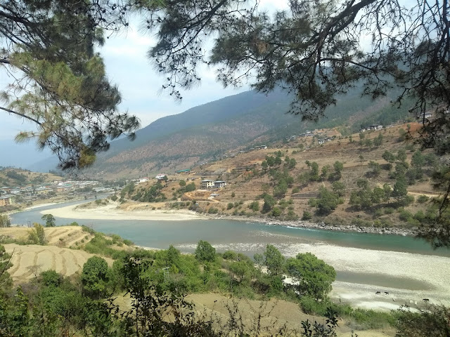 River, Travel, Punakha