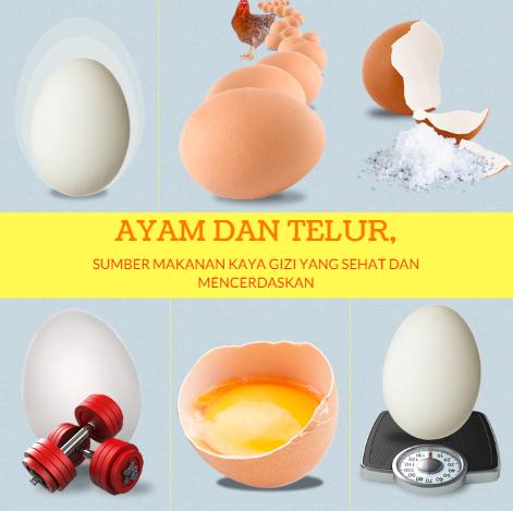 Ayam dan Telur, Sumber Makanan Kaya Gizi yang Sehat dan Mencerdaskan